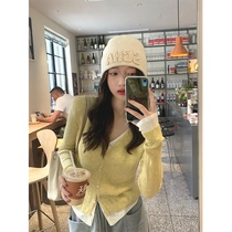 Zhang Beibei ibell2021 year new fake two pieces of V-neck knitwear women lazy wind design sense niche coat tide