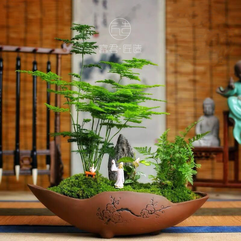 Zen green plant office study tabletop ornament plant living room small potted air purifying floral ornaments