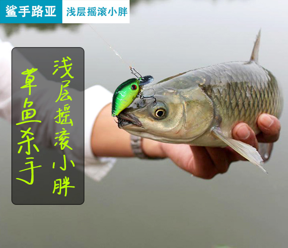5.5cm/7.5g biomimetic bait for freshwater perch with tilted mouth