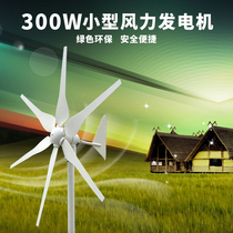 300W Wind turbine 12v24v household 220v small wind power generation combination landscape complementary power generation