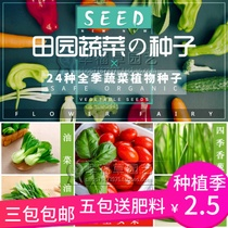 Family Gardening planting vegetables and fruit seeds indoor terrace patio easy to survive edible vegetable seeds