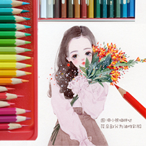 (Red panda)Germany huibaijia 60 color water soluble 72 color oily 100 color Castle tin box hand-painted color lead