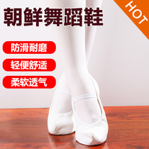 Korean traditional dance shoes hook shoes white classical dance shoes indoor practice dance shoes flat Bottom Dance shoes