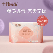 October crystallization of maternal tampons after the birth of special post-natal dew pregnant womens monthly supplies M No. 10 pieces