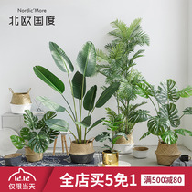 Nordic country INS style large simulation green plants decorative traveler banana potted plant decoration indoor fake tree