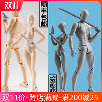 Wandai SHF mannequin model puppets can be animated painting art cartoon sketches of men and women