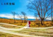 Shipping the new Korean bride wedding veil simple bare yarn 5 meters long trailing trip shoot soft yarn plain yarn
