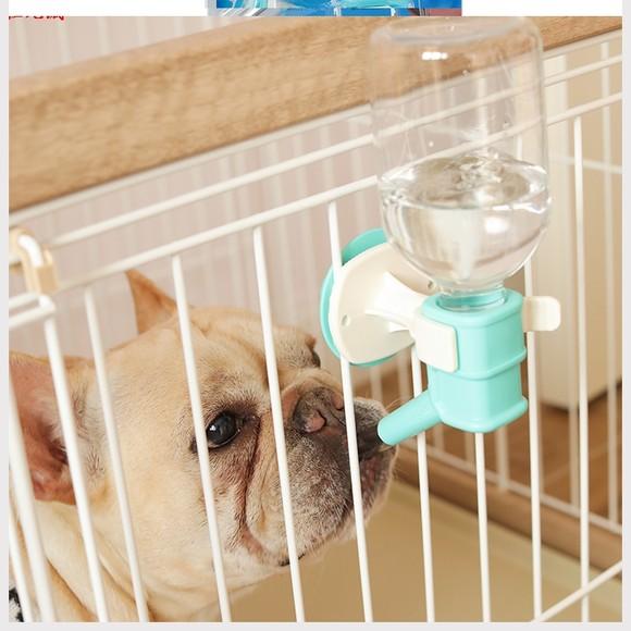 Bình nước cho thú cưng