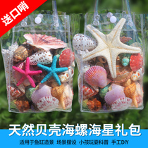 Natural shell conch pose starfish coral fish tank aquarium ground-making childrens toys small gifts