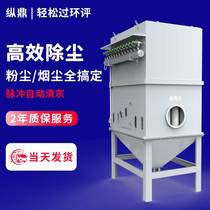 Pulse bag dust collector Central dust removal stand-alone warehouse top cyclone boiler Wood industry dust collection environmental protection equipment