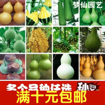Hand-twist gourd seed King gourd Seed small gourd seed garden balcony planting flowers green plant potted