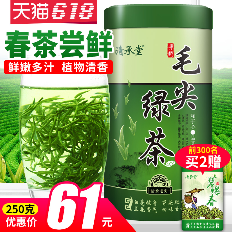 Qingchengtang 2019 New Tea Xinyang Taste Maojian Green Tea