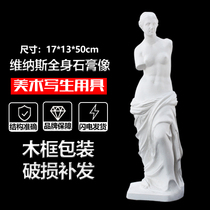 Venus body plaster like H50cm small Venus ornaments art teaching aids painting art still life portrait