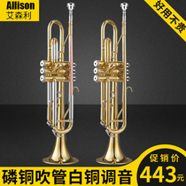 Eisenli three-tone small instrument down b tone professional students adult beginner level playing Western small