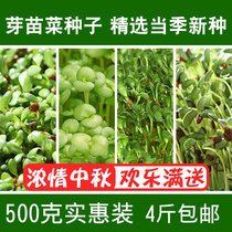 Sprout vegetable seeds bean sprouts seed paper vegetables alfalfa pea oil sunflower black wheat grass soilless cultivated vegetables