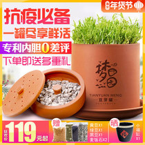 Dream idyllic earthen pottery bean sprouts pot large capacity hair bean sprouts machine home automatic purple sand bean sprouts artifact Bean tooth Bowl