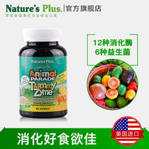 Animal Parade U.S. Imports Childrens Digestive Enzyme Chewing Tablets Improve Anorexic Gastroeating Help Absorb