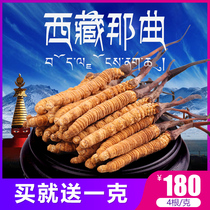 (18 new Grass) cordyceps sinensis authentic wild Tibet na Dong cordyceps (4 Genk) 10 g gift Box