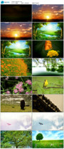 Recite led video background Zhu Ziqing spring