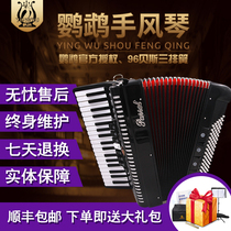 Parrot Accordion Adult 96 Bass traditional playing primer three row spring YW871 send simple spectrum textbook