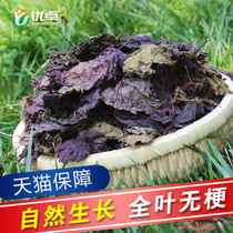 Purple leaf tea burning fish and shrimp crab seafood to fishy spice Suzi Purple leaf dry edible dry purple bubble foot 150g