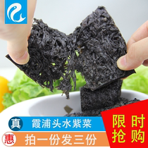 Fujian Specialty Xiapu Head Water laver non-sand laver generous dish high quality seaweed buns dry sea moss soup