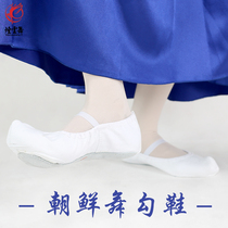 Red dance shoes Korean Dance hook shoes classical national dance training shoes canvas soft bottom practice shoes authentic