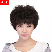 Show girls hair wig Di elderly mother nature fluffy short curly tail human hair wigs chemotherapy