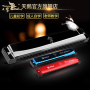 The 24 hole tremolo harmonica Swan C harmonica for beginners beginner student teaching practice instrument of adult children