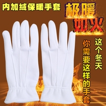 Winter duty warm cotton with velvet thickened white gloves male ladies security Traffic etiquette Review Jewelry Gloves